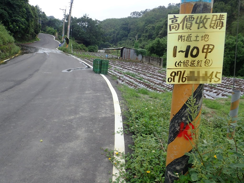 苗栗山坡地區電線桿的廣告說明太陽光電的進駐。照片提供:李璟泓