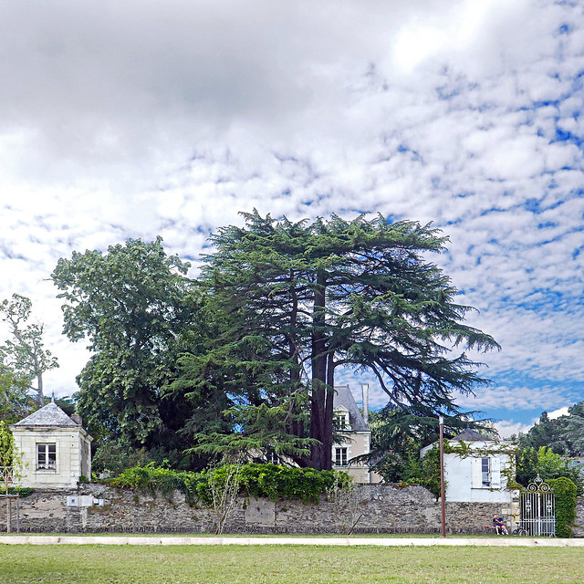 Bouchemaine, Maine-et-Loire, France