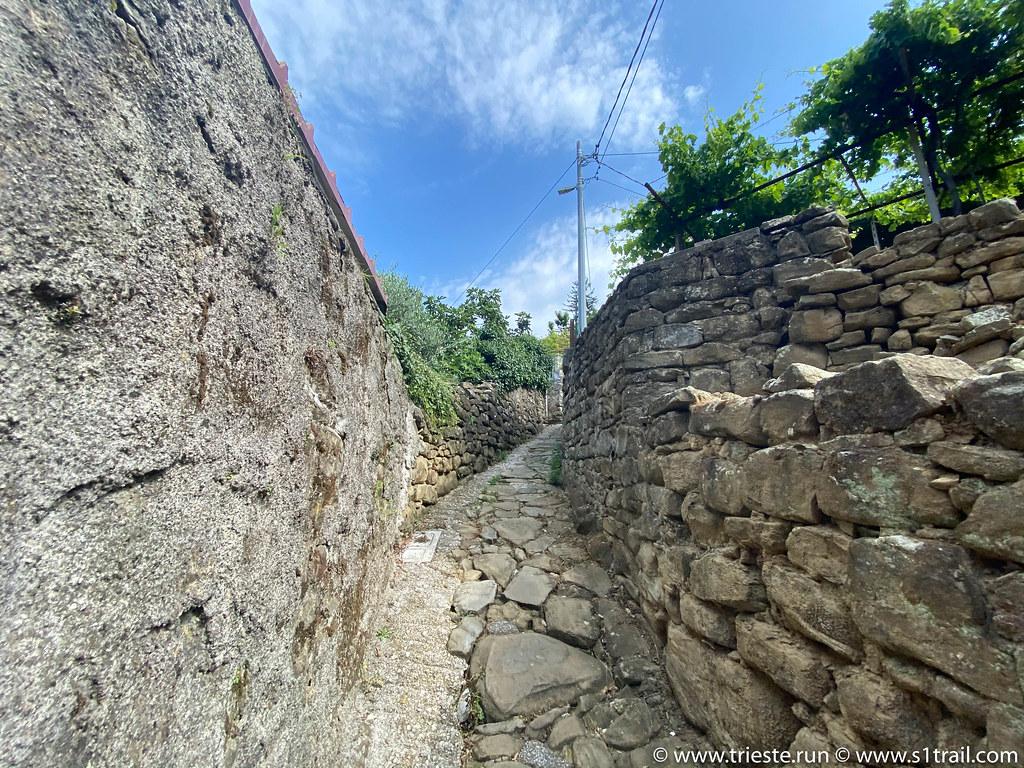 Anello di Barcola Running Trieste Corsa