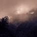 Magical clouds - Eastern Himalayas, Sikkim, India