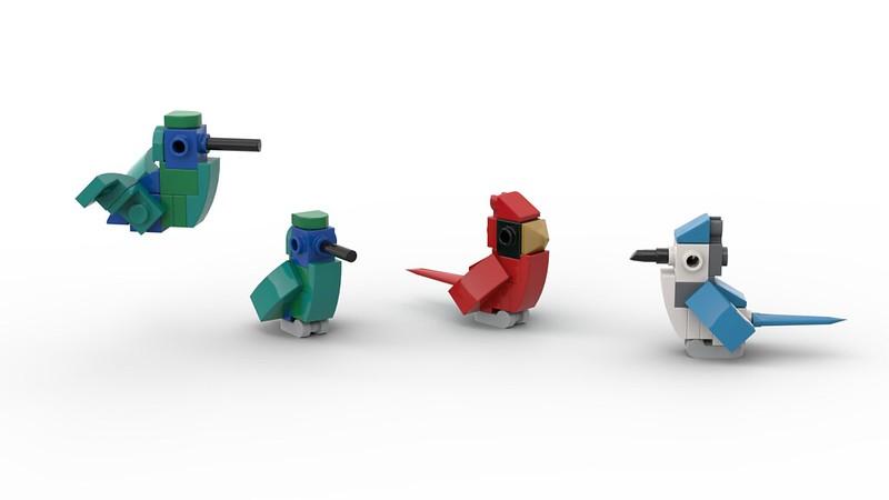 Cardinal, Bluejay, Hummingbird