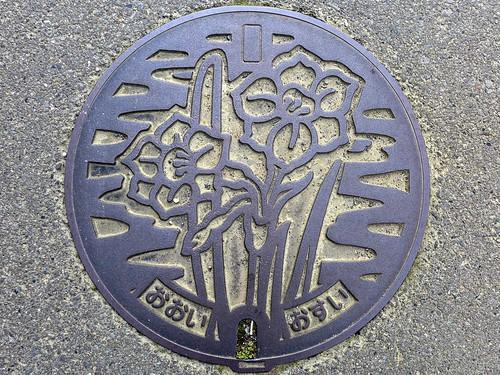 Oi Kanagawa, manhole cover 2 (神奈川県大井町のマンホール2)