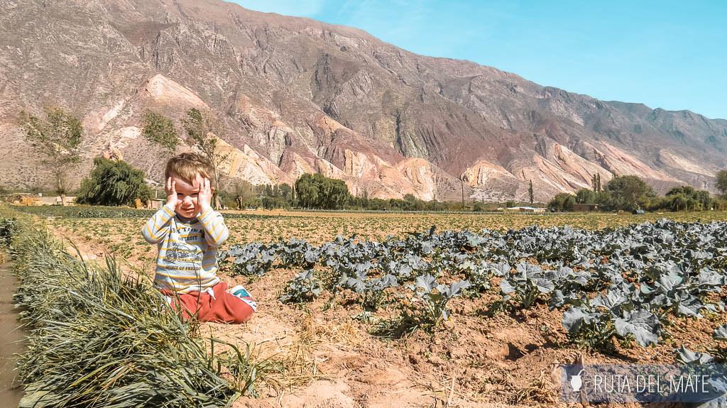 Paleta del Pintor en Maimara, una de las cosas que hacer en Jujuy