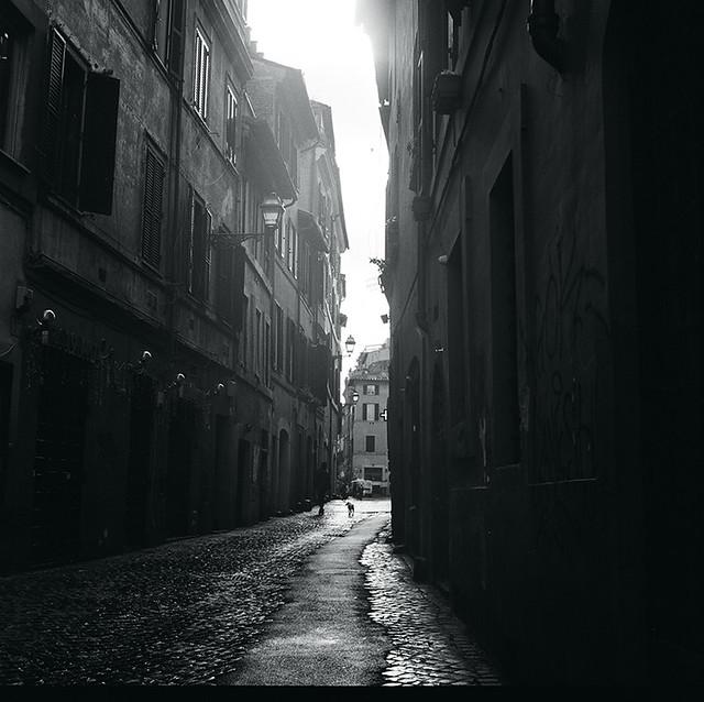 amò (roma 08)