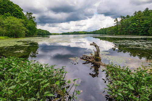 clouds handheld lake landscape reflection sky statepark summer trees hopkinton massachusetts unitedstatesofamerica