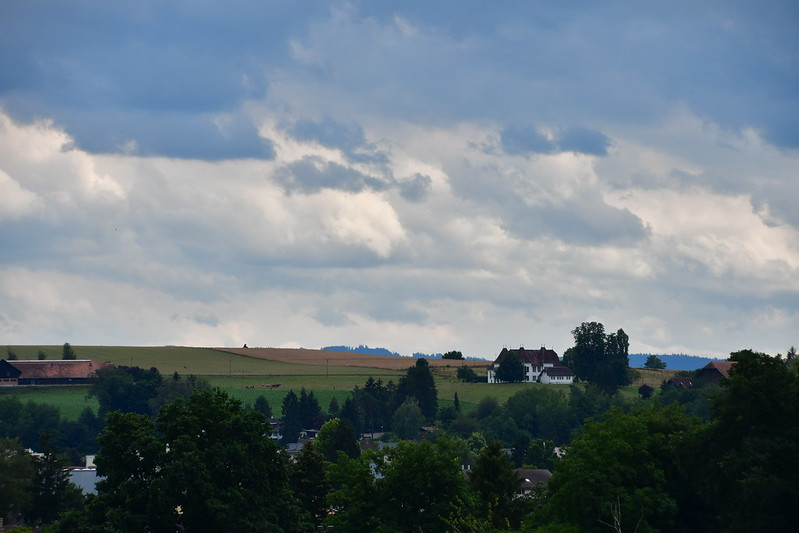 Landscapes Feldbrunnen south 02.07 (1)