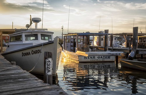 Photo of fishing boats in harbor
