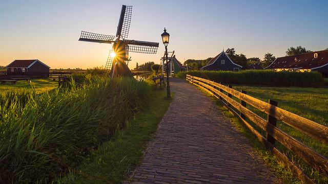 Small windmill sunburst