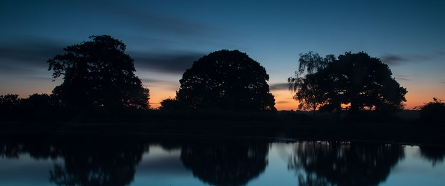 Blue hour at Mogshade Pond in the New Forest