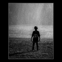 Rain & Shine Feel the web-Sunshine. * #Lifecreation #manifestation #intention #gratefulness #love #bliss #emotion #meditation #travel #travelphotography #streetphotography #streetportrait #nature #beauty #beautiful #art