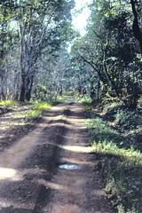 Road to Tonkia 1