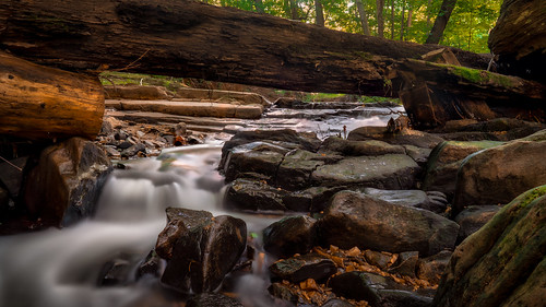 creek stream run river water rapids waterfalls croydoncreek rockville maryland md moco montgomerycounty summer july evening sunset sunlight woods forest trees leaves branches trunks foliage canopy cover dark light shadow nature outdoors outside park suburbs suburban sony alpha a7riii ilce7rm3 sel24f14gm gmaster gm wideangle longexposure freewellfilters nd variable neutraldensity