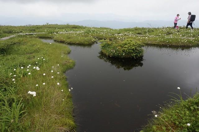 白木峰の浮島