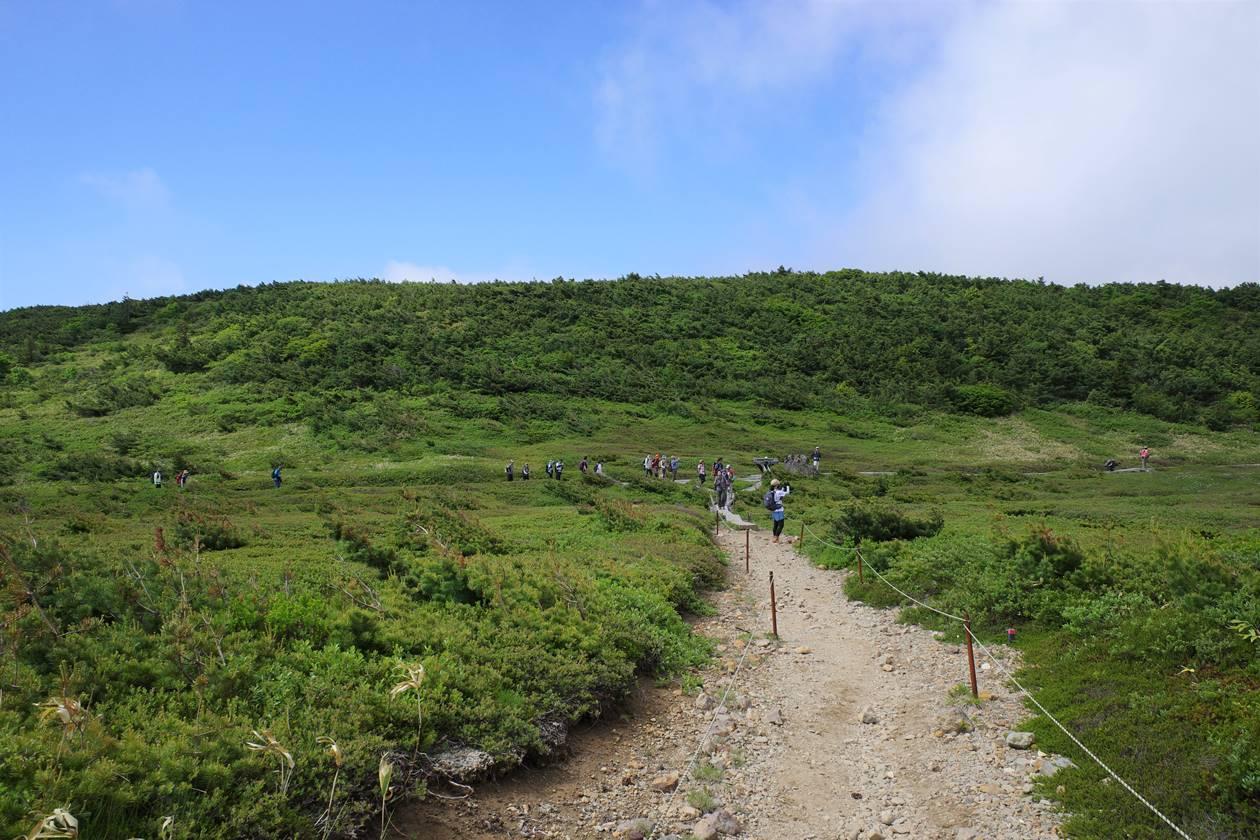 一切経山 湿原の登山道