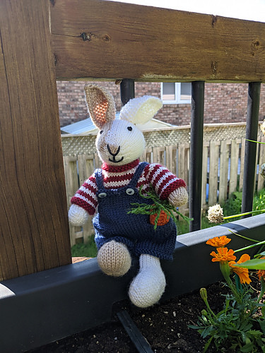 Linda knit another Boy Bunny by Julie Williamsfor a baby not due until October! He is wearing Dungarees from one of her clothing patterns available to give them a wonderful wardrobe!