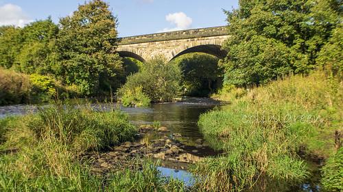 Summer and the Calder at Copley Railway Bridge