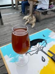 Drinking a Avklädd by Jackdaw Brewery