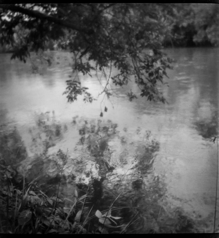 overhanging branches, reflections II, tributary, French Broad River, Asheville, NC, Linden Lindar box camera, Foma 200, Moersch Eco film developer, 6.27.20