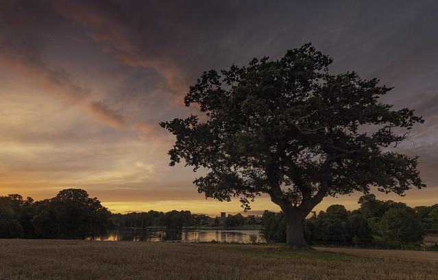 Rural Sundown