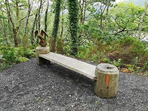 Buzzard bench