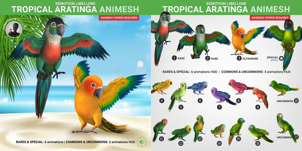 SEmotion Libellune Tropical Aratinga Animesh