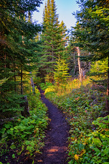 Isle Royale Hiking Trail