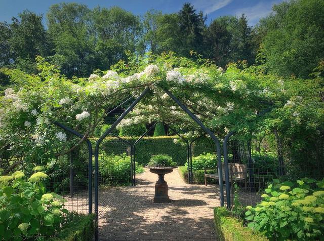 Ein Garten Eden