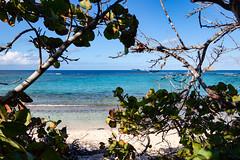 "Caribbean beach of ""Anse à la Gourde"", Guadeloupe"