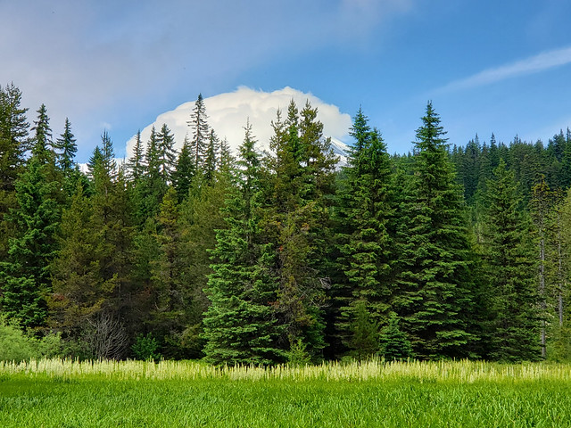 Summit Meadow on the historic Barlow Road and Indian Trail - Mount Hood National Forest