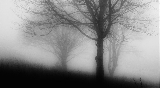 Lost in the mists of time