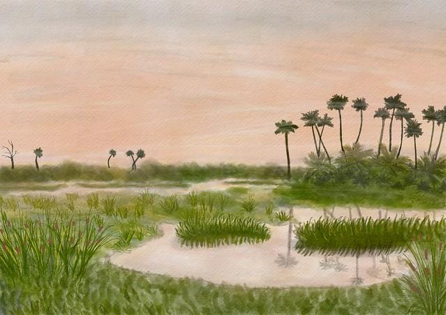 Early Summer Dawn, Orlando Wetlands Park