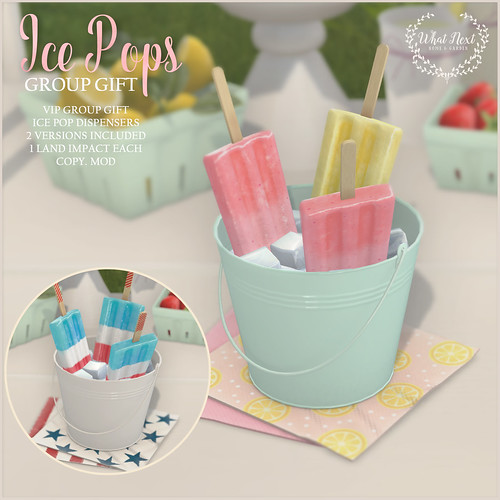{what next} Ice Pops - Group Gift