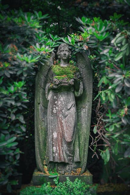 Friedhof Hamburg Bergstedt