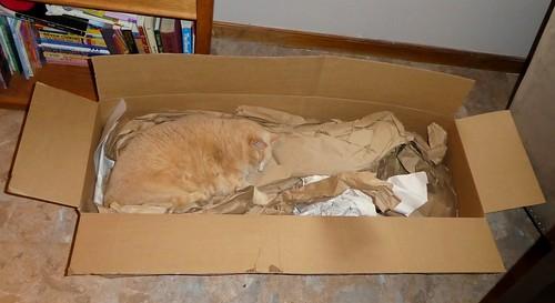 Sooner in a Box