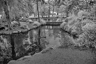 Point Defiance Park Pond in Infrared, Tacoma, Washington