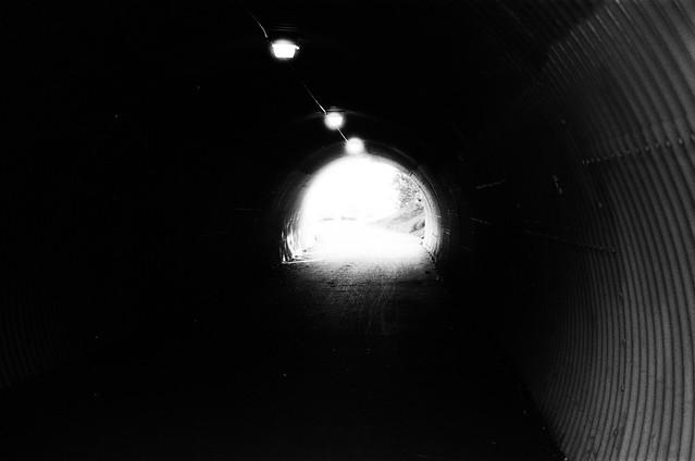 Going for the Light