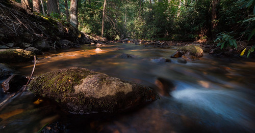 outside outdoors sociallydistant pennsylvania adamscounty gettysburg summer july sunshine weather hot rural history roadtrip exploring july4th weekend vacation sony alpha a7riii ilece7rm3 fullframe voigtlander 15mm heliar aspherical superwideangle lens landscape photography manual caledonia statepark park forest woods nature longexposure creek water rapids rocks trees leaves low sunset evening