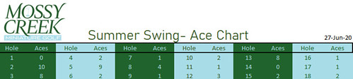 Summer Swing Tournament Aces Chart