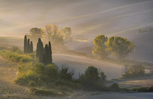 *Toscana Poetica* @ *No. 1500*