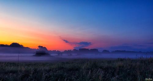 sonne früh sonneaufgang braunschweig okerauen hülperode see teich vögel natur outdoor morning before sunrise canon eos5dmarkiv tamron