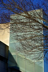 Branched Architecture
