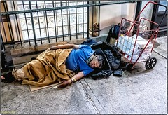 Homeless In New York ... Home Of Wall Street!