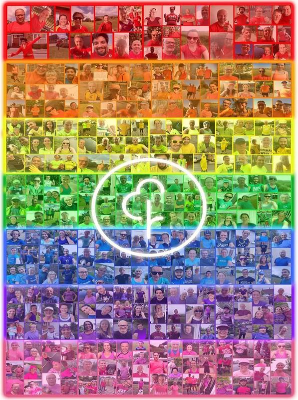 Rainbow week 7