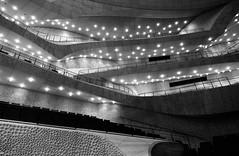 Der grosse Saal der Elbphilharmonie 07