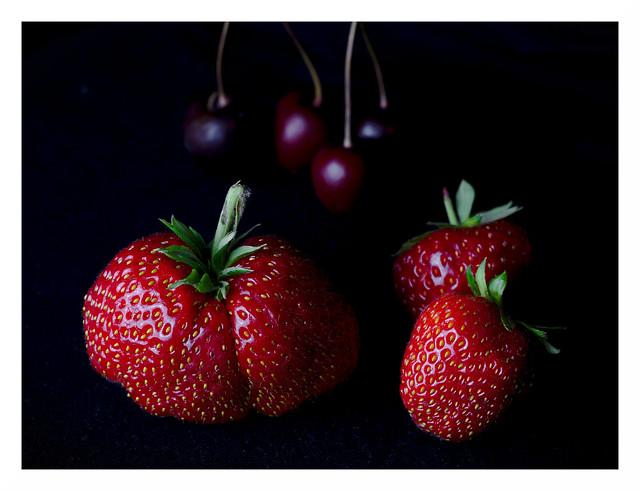 Späte Früchte