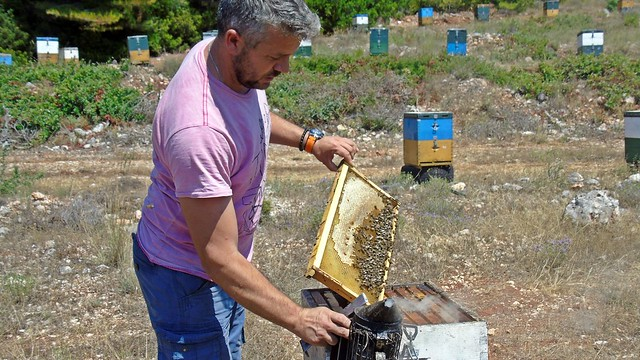 Μελισσοκόμοι Αθανίου