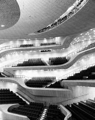 Der grosse Saal der Elbphilharmonie 04