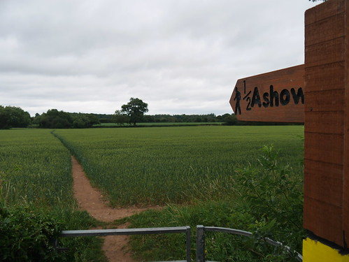 The path to ashow