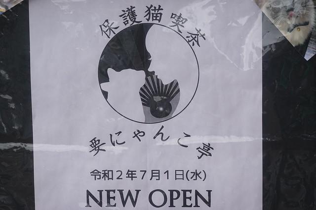 要にゃんこ亭(要町)