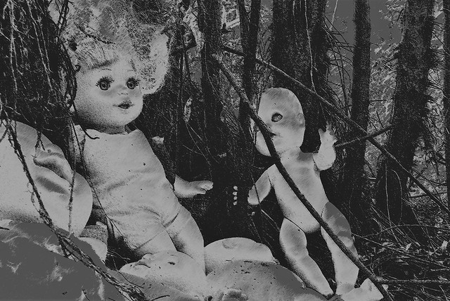 Dollies of the deep woods